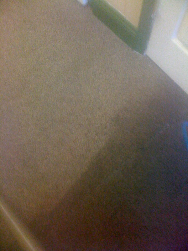 bel air carpet cleaning services