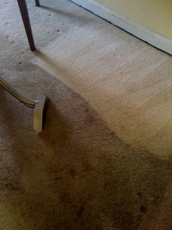 maryland carpet cleaning services in baltimore