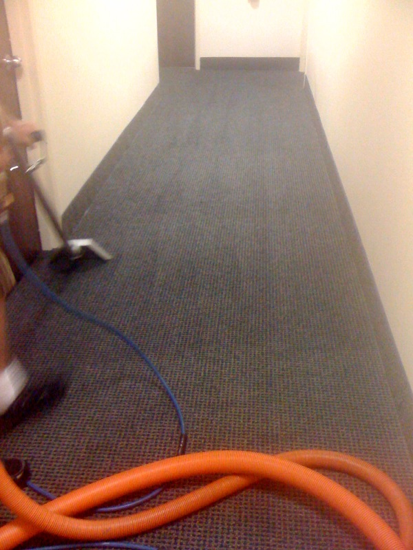 business carpet cleaning in maryland