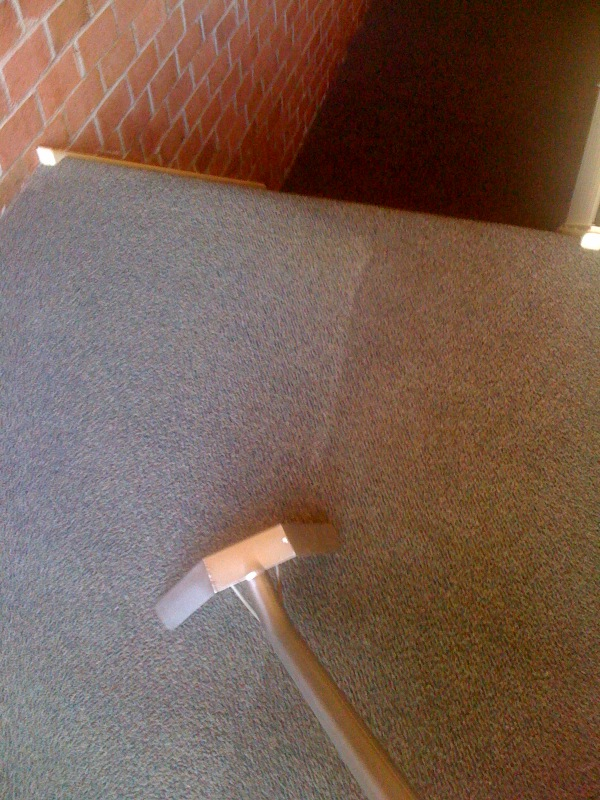 dirty carpet cleaning in Maryland